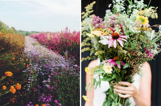 10 must do's before labor day - pick a wildflower bouquet | FINDING SHIBUSA